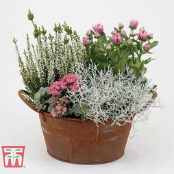 Outdoor Rusted Round Planter - Gift