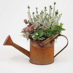 Outdoor Watering Can Planter - Gift