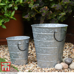 Rustic Planter - Gift