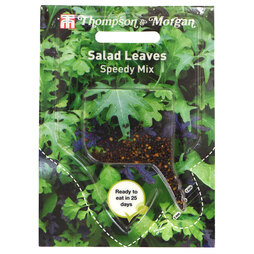 Salad Leaves 'Speedy Mix' (Sow Clear)