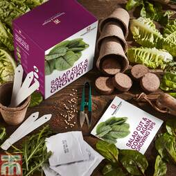 Cut & Come Again Growing Kit