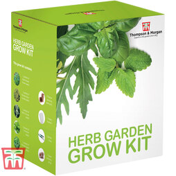 Herb Garden Growing Kit - Gift