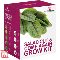 Come & Come Again Growing Kit - Gift