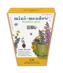 Seedball Bamboo Pots - Bee Mix
