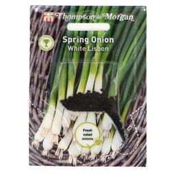 Spring Onion 'White Lisbon' (Sow Clear)