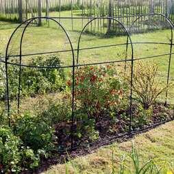 Steel Long Fruit Cage