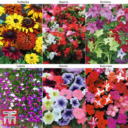 Summer Bedding Collection