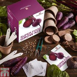 Super food Growing Kit