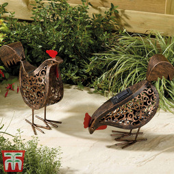 Pair of Decorative Solar Hens - Gift