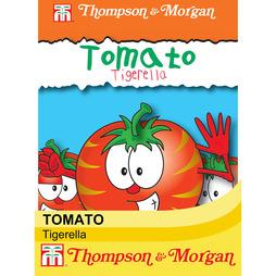 Tomato 'Tigerella'