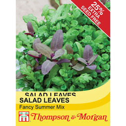 Salad Leaves 'Fancy Summer Mix'