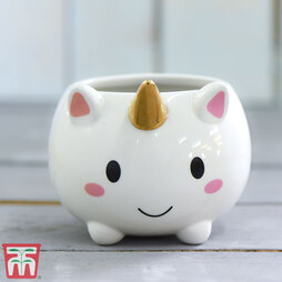 Unicorn Pot with Gold Horn