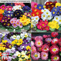 Nurseryman's Choice Autumn & Winter Bedding