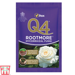 Vitax Q4 Rootmore