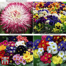 Winter Bedding Collection