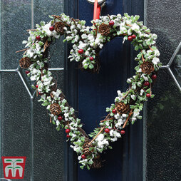 Snowy Buxus & Berry Heart Christmas Wreath - Gift