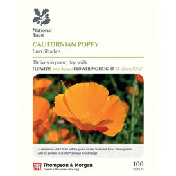 Californian Poppy 'Sun Shades' (National Trust)