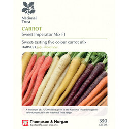 Carrot 'Sweet Imperator Mix' F1 Hybrid (Maincrop) (National Trust)