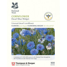 Cornflower 'Dwarf Blue Midget' (National Trust)