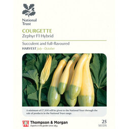 Courgette 'Zephyr' F1 Hybrid (National Trust)