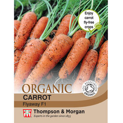 Carrot 'Flyaway' F1 Hybrid - Organic Seeds
