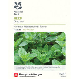 Oregano (National Trust)
