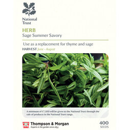 Summer Savory (National Trust)