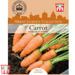 Carrot 'Nandor' F1 Hybrid - Kew Collection Seeds