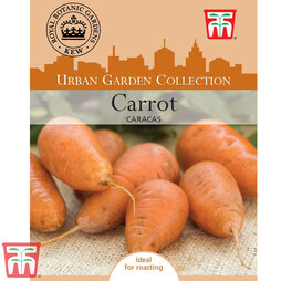 Carrot 'Caracas' - Kew Collection Seeds
