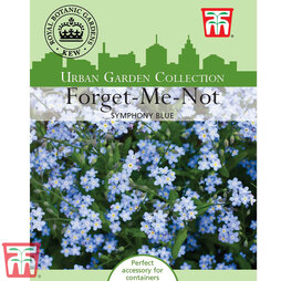 Myosotis 'Symphony Blue' - Kew Collection Seeds