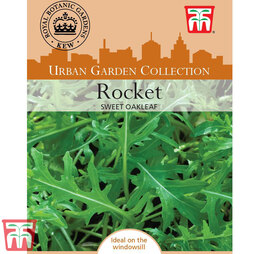 Rocket 'Sweet Oakleaf' - Kew Collection Seeds