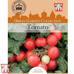 Tomato 'Cherry Kisses' - Kew Collection Seeds