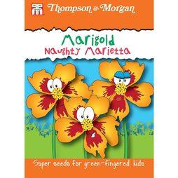 Marigold 'Naughty Marietta'
