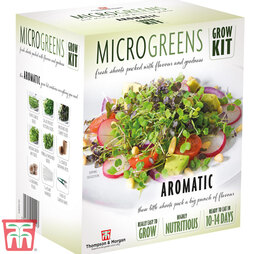 Seed Grow Kit Microgreens Aromatic