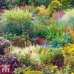 Nurserymans Choice Seasonal Perennial Border
