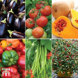 Nurseryman's Choice Vegetables