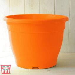 Bella Orange Pot