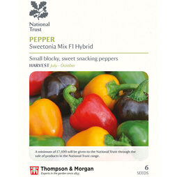 Sweet Pepper 'Mini Bell Mixed' (National Trust)