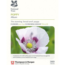 Poppy 'Album' (National Trust)