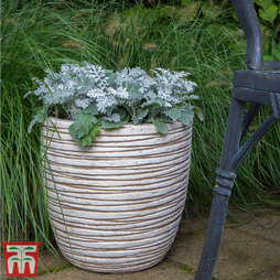Fibre Clay Vermont Round Desert Pot Set