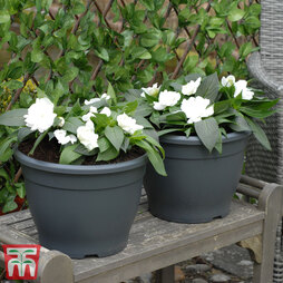 Patio Planter Sabina Dark Grey