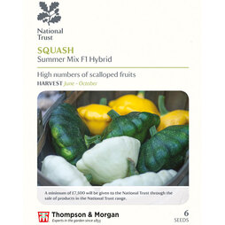 Squash 'Summer Mix' F1 hybrid (Summer) (National Trust)