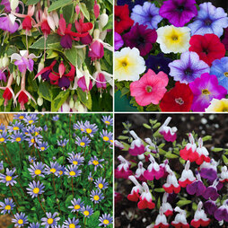 Nurseryman's Choice Container Mix