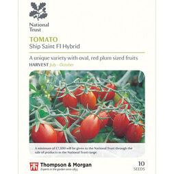 Tomato 'Ship Saint' (National Trust)