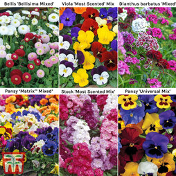 Winter Bedding Saver Collection