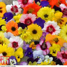 Edible Flowers Mix