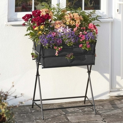 Black Garden Grow Raised Metal Planter including £20 of veg seed